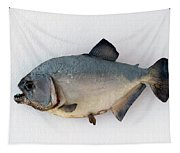 Fish Mount Set 04 A Tapestry