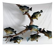 Fish Mount Set 05 A Tapestry