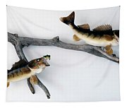 Fish Mount Set 06 A Tapestry