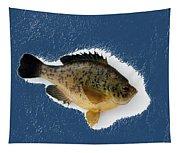 Fish Mount Set 08 C Tapestry