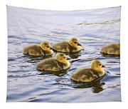 Five Goslings In The Water Tapestry