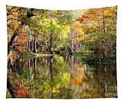 Florida Autumn Secret Tapestry