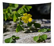 Flower And Dancing Clover Tapestry