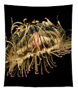 Flower Hat Jelly Olindias Formosa Tapestry by Hiroya Minakuchi