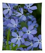 Flower Wild Blue Phlox 1 B Tapestry