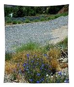 Flowers In The Gold Hill Desert Tapestry