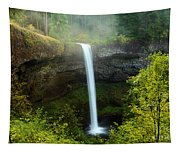 Fog Over The Falls Tapestry