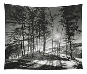 Forelacka Burial Ground Tapestry