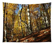 Forest Fall Colors 4 Tapestry