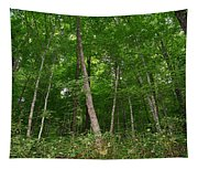 Forest For The Trees Tapestry
