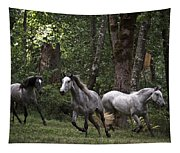 Forest Mares Tapestry