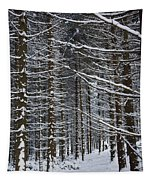 Forest Of Marburg In Winter Tapestry