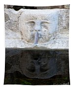 Fountain Face Tapestry