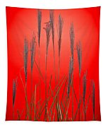 Fountain Grass In Red Tapestry