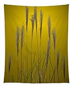 Fountain Grass In Yellow Tapestry
