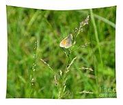 Fragile Beauty #01 Tapestry