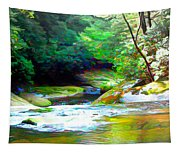 French Broad River Filtered Tapestry
