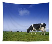 Friesian Cow Grazing In A Field Tapestry