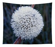 Frost On Mature Dandelion Blossom Tapestry