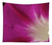 Fuchsia Morning Glory Tapestry