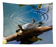 Funny Turtle Catching Some Rays Tapestry