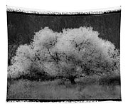 Ghost Tree Tapestry