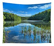 Glassy Waters Tapestry