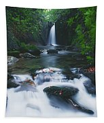 Glencar, Co Sligo, Ireland Waterfall Tapestry