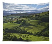 Glenelly Valley, County Tyrone Tapestry