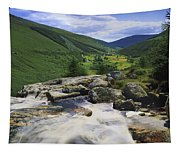 Glenmacnass, County Wicklow, Ireland Tapestry