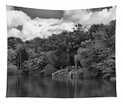 Gnoll Country Estate 2 Mono Tapestry