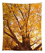 Golden Autumn View Tapestry