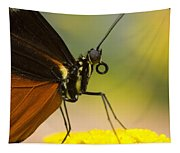 Golden Helicon On Flower Tapestry