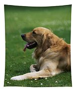 Golden Retriever Dog Laying In The Grass Tapestry