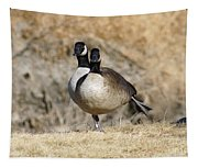 Goose Exercises  Tapestry