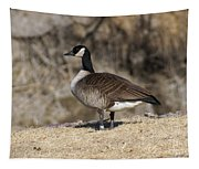 Goose Profile Tapestry