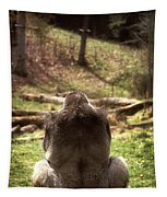 Gorilla At Peace Tapestry