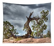 Grand Canyon Facing The Storm Tapestry