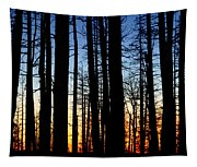 Grand Canyon North Rim Sunset Tapestry