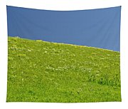 Grassy Slope View Tapestry