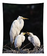 Great Egret In Nest With Young Tapestry