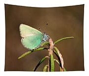Green Hairstreak Tapestry