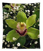 Green Orchid In Baby's Breath Tapestry