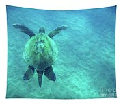 Green Sea Turtle 3 Tapestry