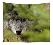 Grey Wolf, Outside Golden, British Tapestry