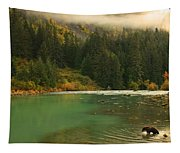 Grizzly Bear Fishing In Chilkoot River Tapestry