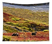 Grizzly Bears And Fall Colours, Denali Tapestry