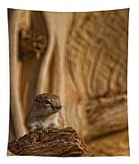 Ground Squirrel At Monument Valley Tapestry