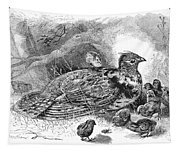 Grouse And Young Tapestry