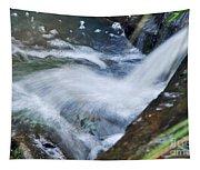 Gushing Tapestry